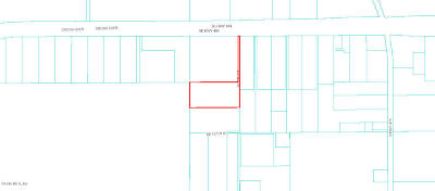 Ocala Residential Lots & Land For Sale: 13750 SE 8th Court