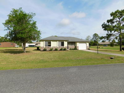 Ocala Single Family Home For Sale: 541 Midway Trk Pass