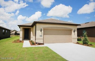 Ocala Single Family Home For Sale: 9747 SW 76 Lane Rd