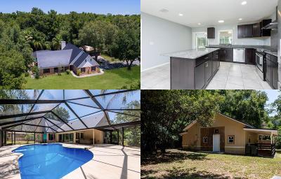 Ocala Single Family Home For Sale: 4294 SE 44 Ave Road