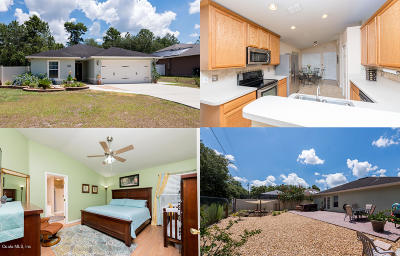 Ocala Single Family Home For Sale: 3764 SW 133 Loop