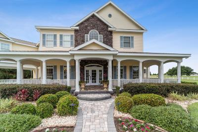 Lake County, Sumter County Single Family Home For Sale: 5513 River Bed Road