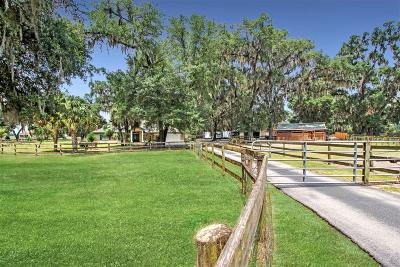 Ocala Farm For Sale: 1891 NW 150 Avenue