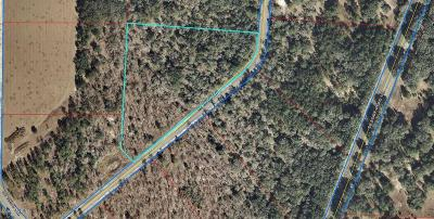 Levy County Residential Lots & Land For Sale: SE 139th Terrace