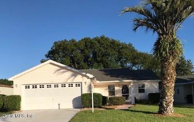 Lady Lake Single Family Home For Sale: 1161 Del Toro Drive