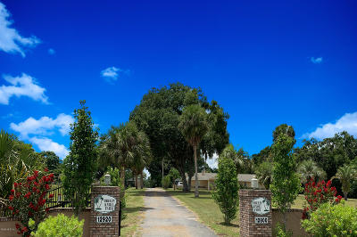 Belleview Farm For Sale: 12800 Us Hwy 301
