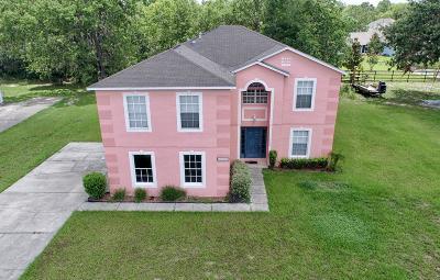 Ocala Single Family Home For Sale: 11733 SW 57 Th Terrace