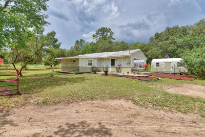 Dunnellon Single Family Home For Sale: 11196 N Farmwood Avenue