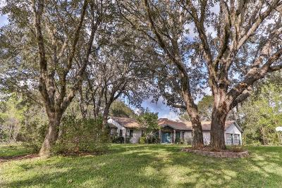 Hernando Single Family Home For Sale: 585 E Foresthill Place Place