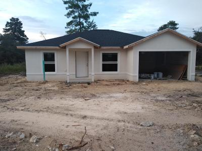 Ocala Single Family Home For Sale: 16562 SW 31st Circle