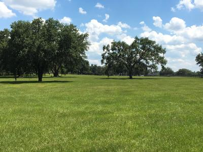 Ocala Residential Lots & Land For Sale: 15380 W Hwy 328
