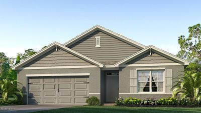 Ocala Single Family Home For Sale: 96 Hickory Course