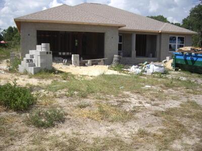 Ocala Single Family Home For Sale: 4069 SW 100th Street