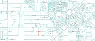 Belleview Residential Lots & Land For Sale: SE 117th Place