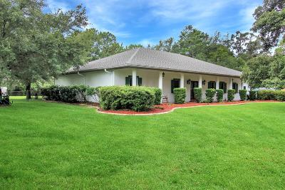 Citrus County Single Family Home For Sale: 354 E Reehill Street