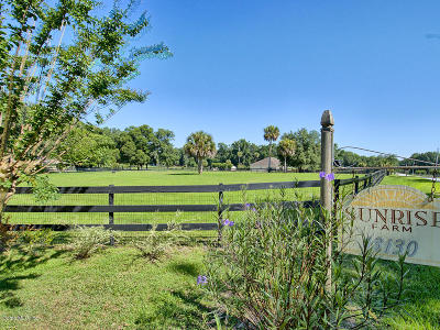 Find Farm Land for Sale in Anthony Florida - Anthony FL Farm land