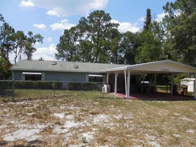 Lake County, Sumter County Single Family Home For Sale: 43531 Bass Lake Lane