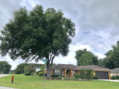Ocala Single Family Home For Sale: 4720 NW 31st Street