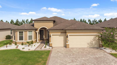 Ocala Single Family Home For Sale: 9205 SW 70th Loop