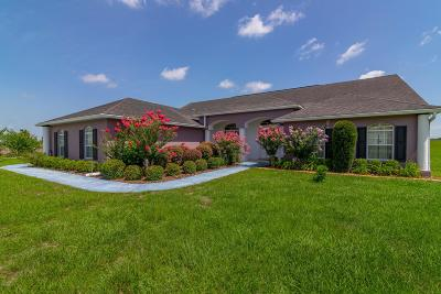 Ocala Single Family Home For Sale: 6735 SE 85th Lane