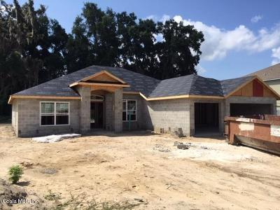Ocala FL Single Family Home For Sale: $248,550