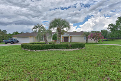 Ocala Single Family Home For Sale: 6903 SW 93rd Street Road