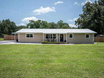 Ocala Single Family Home For Sale: 5531 NE 25th Avenue