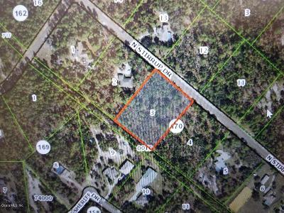 Citrus County Residential Lots & Land For Sale: 3410 N Stirrup Drive