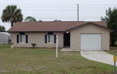 Ocala Single Family Home For Sale: 2 Spring Drive Way