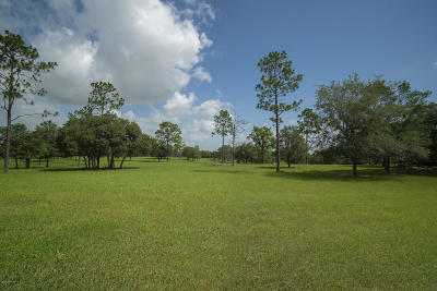 Ocala Residential Lots & Land For Sale: W Hwy 328