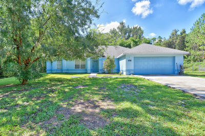 Belleview Single Family Home For Sale: 4310 SE 111th Place