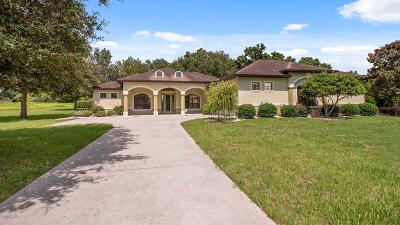 Ocala Single Family Home For Sale: 9920 NW 6th Court
