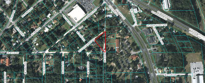 Belleview Residential Lots & Land For Sale: 6050 SE 114th Street Rd Road