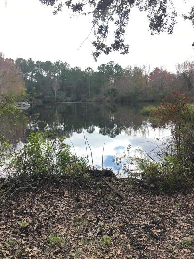 Citrus County Residential Lots & Land For Sale: 10868 N Aloha Point