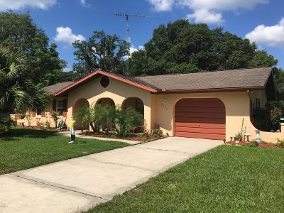 Citrus County Single Family Home For Sale: 2940 S Bay Berry Point Point