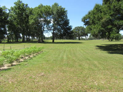 Ocala Residential Lots & Land For Sale: 10681 W Hwy 40