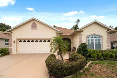Stonecrest Single Family Home For Sale: 12482 SE 173rd Lane