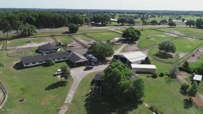 Ocala Farm For Sale: 5465 NW 110th Avenue