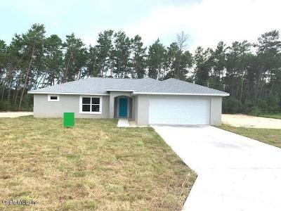 Ocala Single Family Home For Sale: 4162 SW 111th Place
