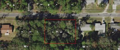 Citrus County Residential Lots & Land For Sale: 9800 W Sandra Street