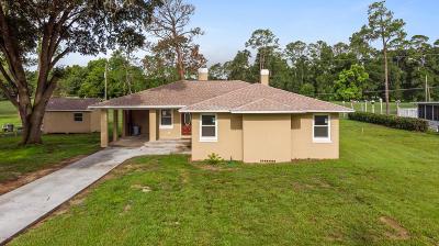 Ocala Single Family Home For Sale: 116 NE 31st Ave. Avenue