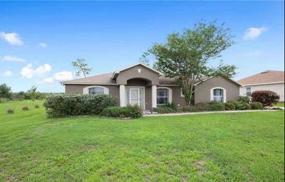 Ocala Waterway Single Family Home For Sale: 10885 SW 38th Avenue