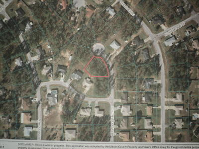 Ocala Residential Lots & Land For Sale: Redwood Run Trace #15