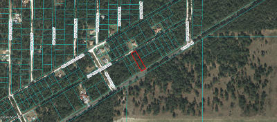 Ocala Residential Lots & Land For Sale: SW 41st Street Road