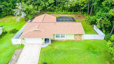 Dunnellon Single Family Home For Sale: 8898 N Salina Drive