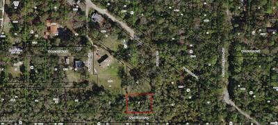 Citrus County Residential Lots & Land For Sale: 5740 S Bablan Terrace