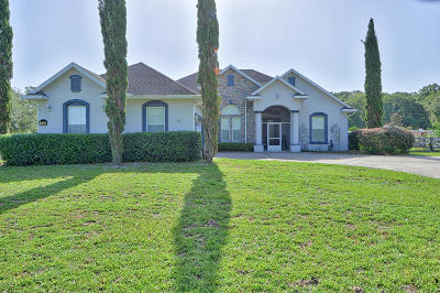 Ocala Single Family Home For Sale: 390 NW 113th Circle
