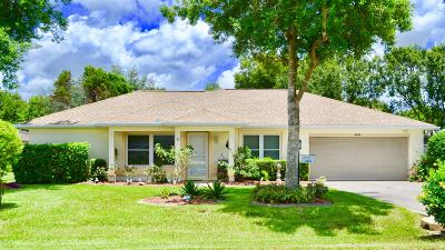 Ocala Single Family Home For Sale: 8484 SW 61st Terrace Road