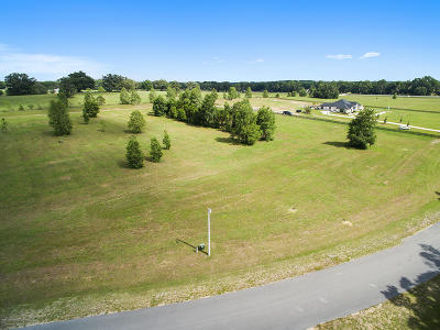 Ocala Residential Lots & Land For Sale: Lot 4 NE 22nd Ct Road