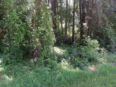 Marion County Residential Lots & Land For Sale: Pecan Drive